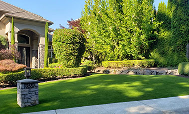 NW Pro Series Summer Blend Turf