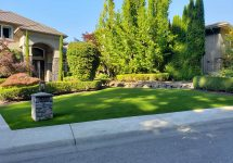 synthetic-turf-lawns-0023
