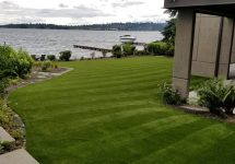 synthetic-turf-lawns-0029