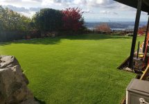 synthetic-turf-lawns-0031